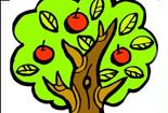 植物简笔画-苹果树