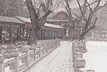 雪中的颐和园