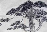 岁寒三友之松树